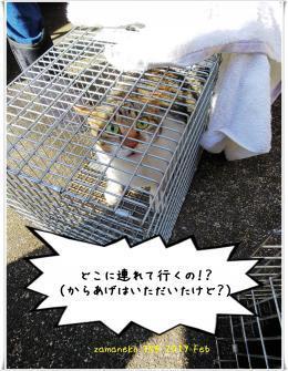 縺晢シ狙convert_20190304153949