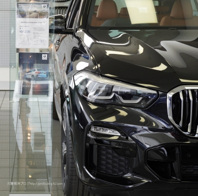 BMWX5ex4.jpeg