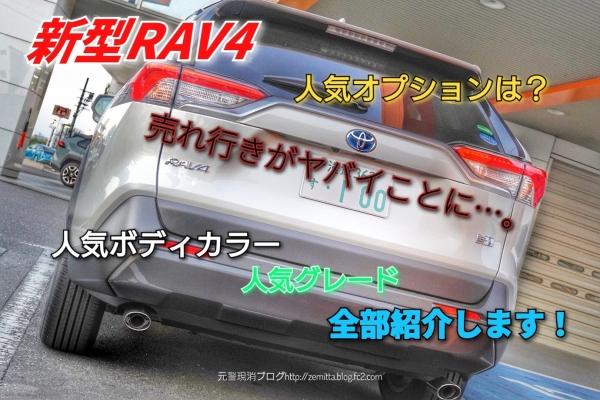 RAV4smn29.jpg