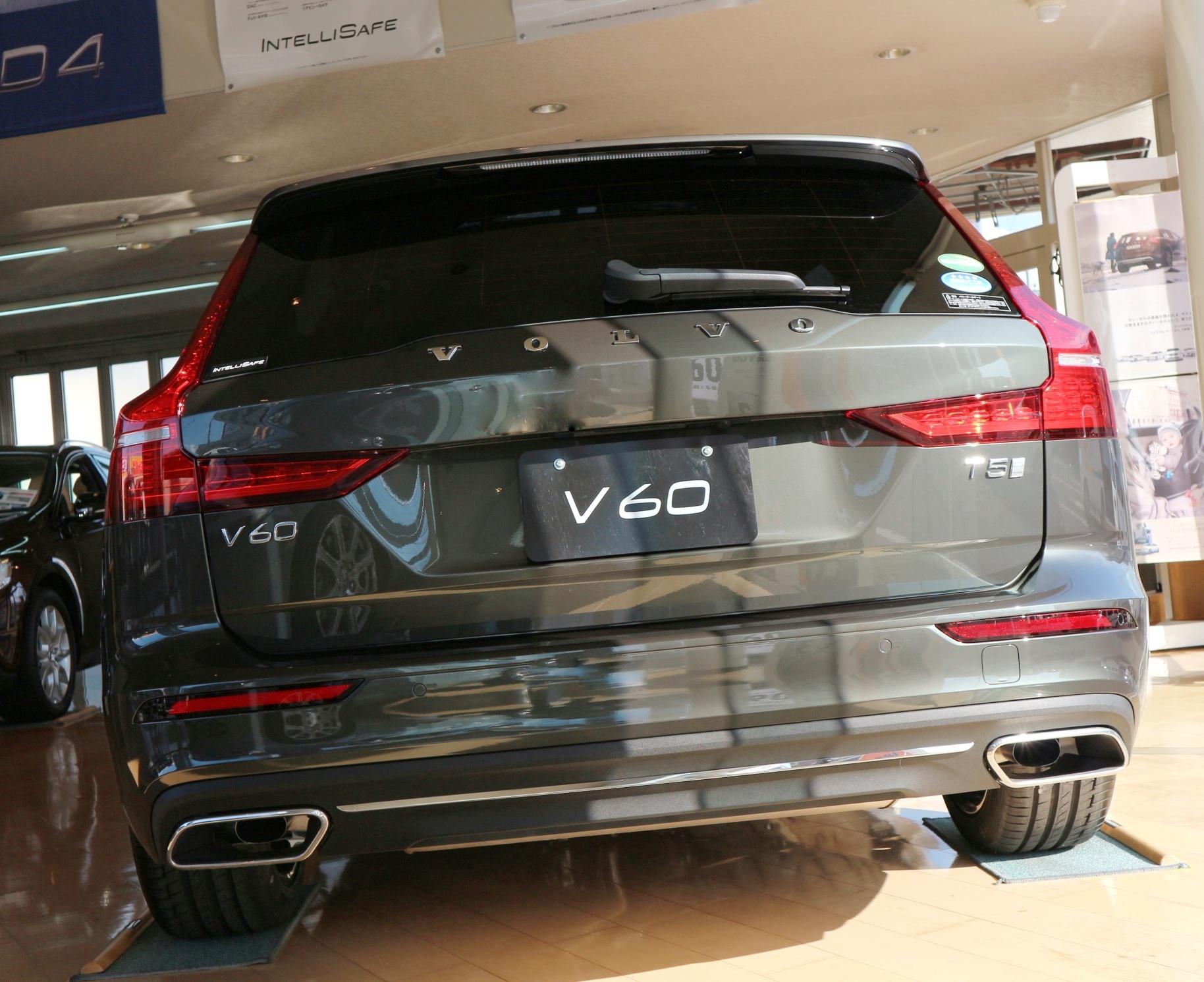 V6015.jpeg
