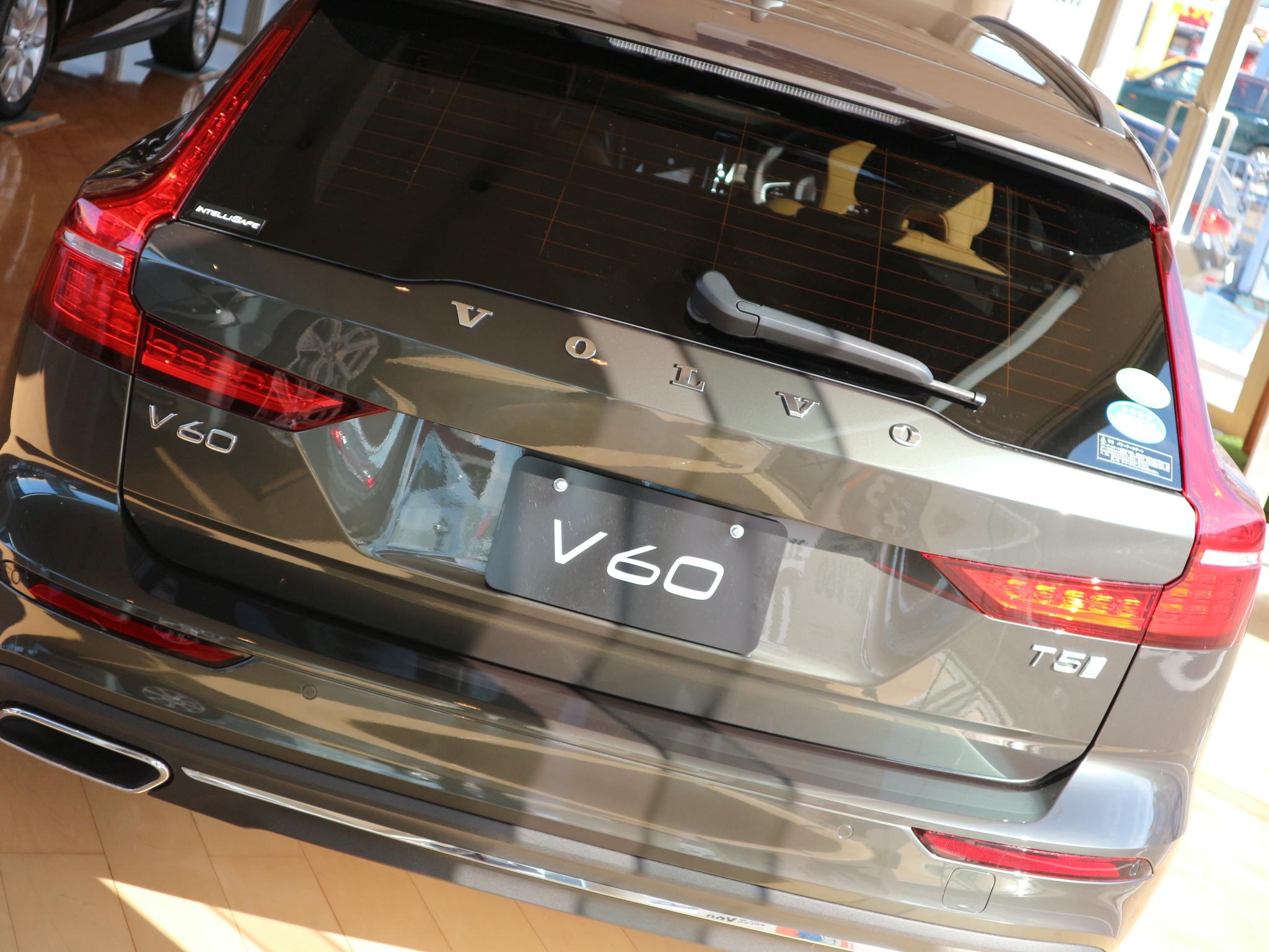 V6016.jpg