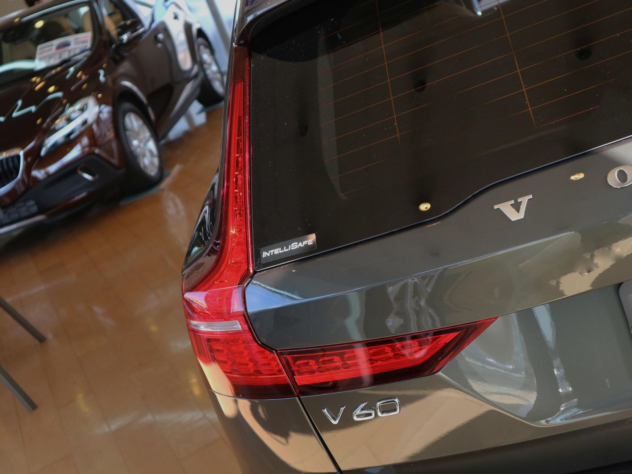V6017.jpeg