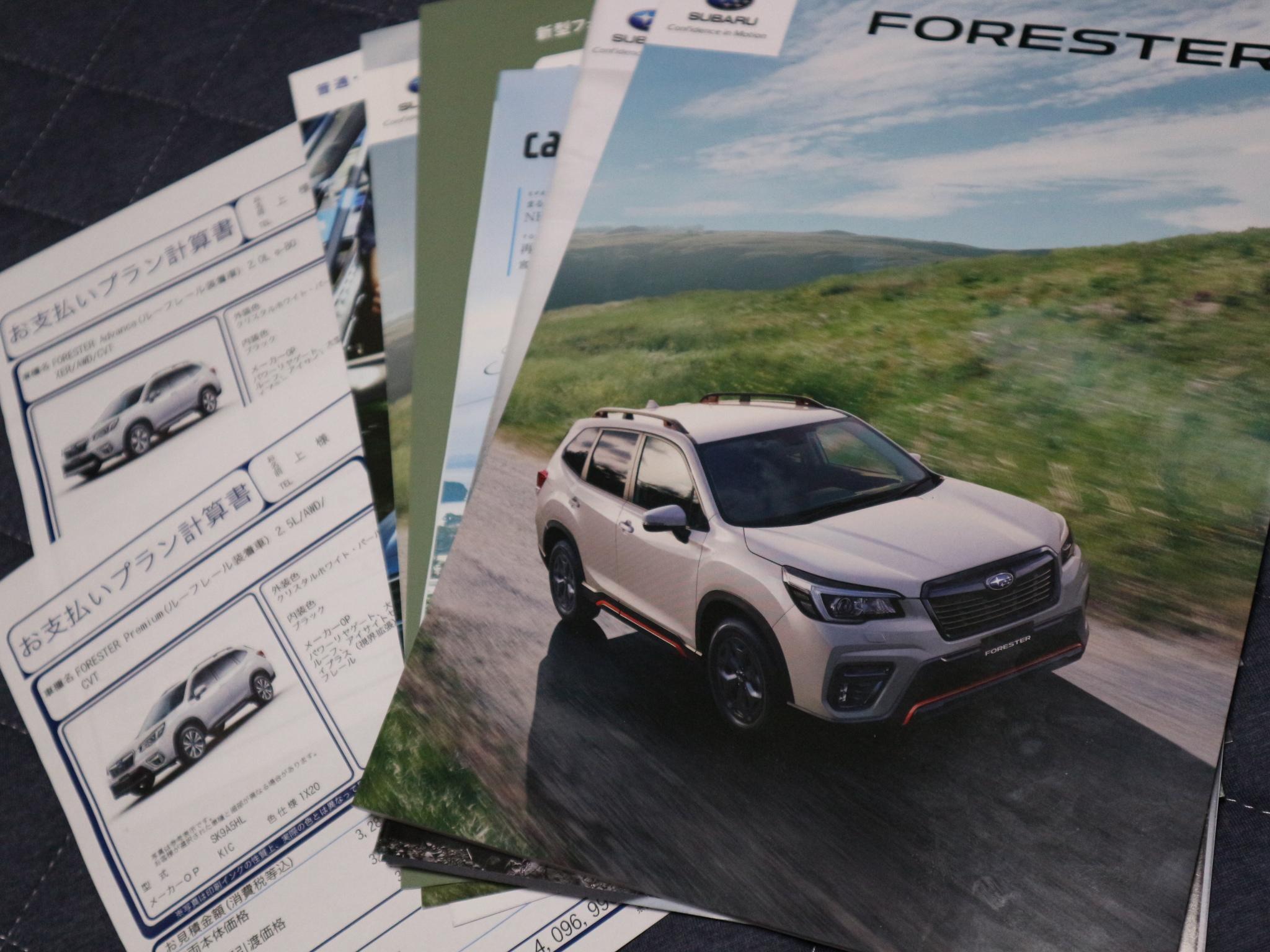 forester40.jpg